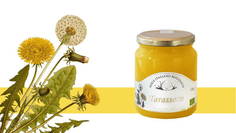 Miele di Tarassaco: informazioni, curiosità e consigli d'uso