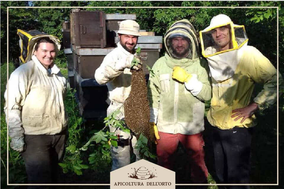 Recuperare uno sciame di api.